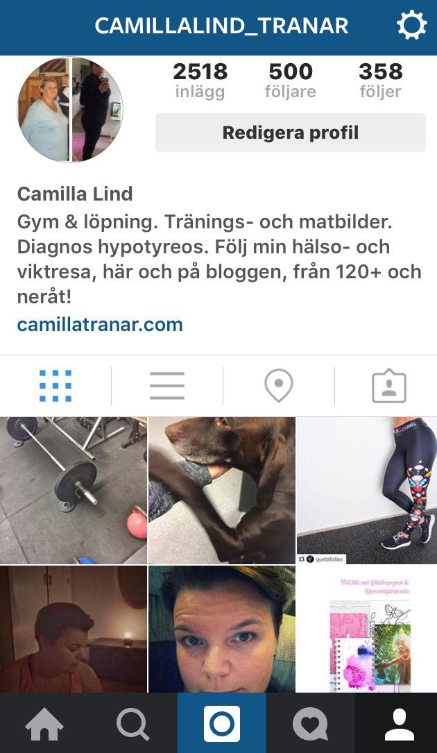 följare på Instagram